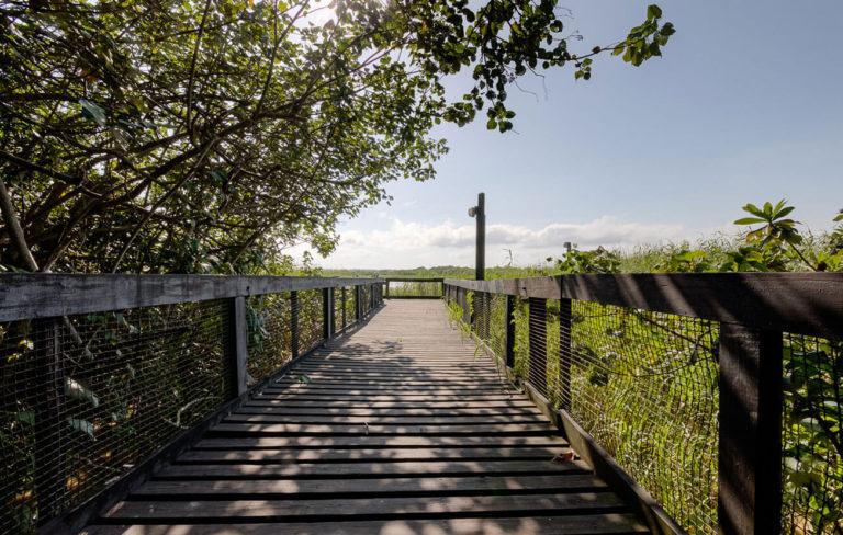 bridgest-lucia-gallary-18
